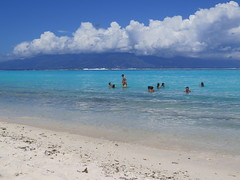 """Apéro en famille sur la plage de Moorea <a style=""""margin-left:10px; font-size:0.8em;"""" href=""""http://www.flickr.com/photos/83080376@N03/16615490764/"""" target=""""_blank"""">@flickr</a>"""