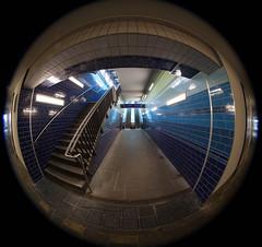 Treppe Aufwärts (henningpietsch) Tags: canon weitwinkel canon5dmark2