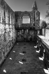 Photo of Dunfermline Palace (_K311248)