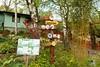 Zoo Bratislava 18.04.2015 3 (Fruehlingsstern) Tags: zoo zebra giraffe bratislava bär gibbon dinosaurier katta schimpanse nashorn dinosaurierpark roterpanda zoobratislava weisetiger weiselöwen panasonicfz200