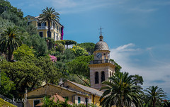 Portofino, Ligure (enricrubioros1) Tags: portofino liguria campanario iglesia ligure palmeras