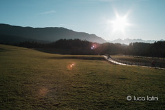 Austria e Germania 2015-43 (Luca Latini) Tags: landscape paesaggio viaggio travel sky cielo germany germania mountain montagna austria castello horses cavalli castle lucalatini vienna wien innsbruck neuschwanstein hohenschwangau romantischestrasse rothenburg wieskirche prater natale inverno winter christmas