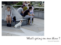 What's going on over there by howard kendall (howardkendall42) Tags: pets dogs interest peopleanddogs howardkendall42