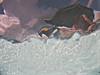 Surface memories (Mirkwood Networks) Tags: underwater water glug sky surface clouds person wife pool poolside wavy