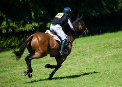 Festival of British Eventing (Sean Wells) Tags: festivalofbritisheventing gatcombepark eventing 2016 horse jumping riders gallop crosscountry olivertownend