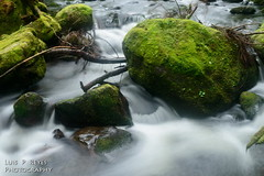 Steelhead Falls (SlowManLuis2011) Tags: bc mapleridge haywardlake steelheadfalls