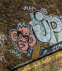 monkey on the rooftops (PDKImages) Tags: street city windows girls urban streetart london art girl beauty graffiti women scenery rooftops faces skin camden stripes murals caged shoreditch walls contrasts owls