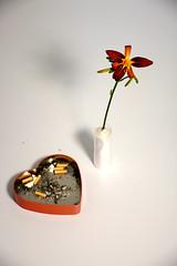 Blume&Asche (shortscale) Tags: orchidee herz aschenbecher zigarette dose asche heartshapedbox