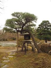 Sent Imperial Palace ( Sent-gosho) (M_Strasser) Tags: sentimperialpalace  sentgosho olympus olympusomdem1 japan kyoto