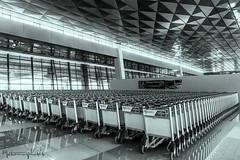 T3U CHECK-IN AREA (14) (MYW_2507) Tags: checkin airport cgk jakarta soetta soekarnohatta t3u terminal3 expansion shia
