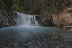 Johnston Creek (Christian Sanchez Photography) Tags: creek landscape waterreflexion wateranimal canada usa river longexplose longexploseru londexplose photography phoebe ngc