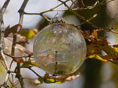 P8150272 (Paul Henegan) Tags: blur glass japanesemaple ornament reflections summer