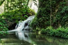 2159  Monasterio de Piedra, Zaragoza (Ricard Gabarrs) Tags: bosque arbustos parque jardin ricardgabarrus olympus natura naturaleza ricgaba