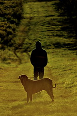Cold Sun (Fausto Loustalet) Tags: dog person cold winter sun green