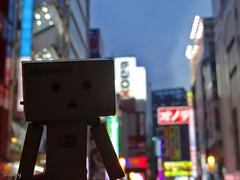 DSC04561_20160331 (Snow_owl) Tags:   tokyo figure