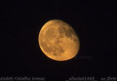 Buenas noches (_altaria01669_) Tags: luna moon roja rojiza red moonlight night noche nocturna