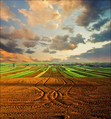 Force of Earth (Katarina 2353) Tags: landscape spring vojvodina katarina2353 katarinastefanovic