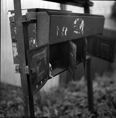 lpentacon031 (mike.chernov) Tags: pentacon six medium format square 6x6 color film people blackandwhitephotograph black white