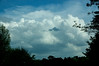 Clouds (tommaync) Tags: blue trees sky white nature clouds nc nikon northcarolina april chapelhill 2015 d40