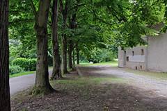 Canavese - Azeglio, Santuario di Sant'Antonio Abate, tigli (mariagraziaschiapparelli) Tags: canavese azeglio viafrancigena viafrancigenacanavesana santantonio allegrisinasceosidiventa