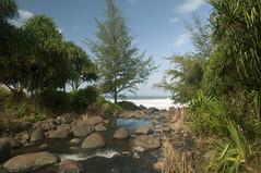 Hanakapiai Stream on Kalalau Trail.  In front Hanakapial Beach. Kalalau hike. Na Pali Coast, Kauai, Hawaii. (lihue1946) Tags: hanakapiai beach