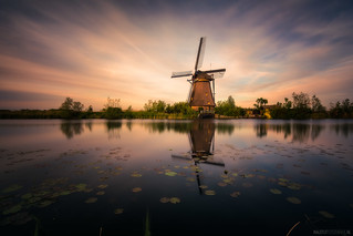 Kinderdijk @ sunset