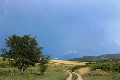 Dirtroad VI (Marcell Krpti) Tags: pszt mtramountains westernmtra nyikom kzpml dirtroad hungary scenery landscape storm clouds sky darksky mountains hill tree robiniapseudoacacia summer fence