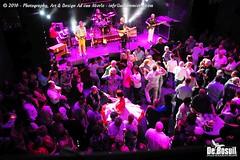 2016 Bosuil-Het publiek bij de 30th Anniversary Steady State 46