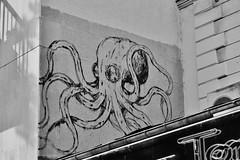 Kraken_2616 avenue Parmentier Paris 11 (meuh1246) Tags: streetart paris kraken avenueparmentier paris11 animaux pieuvre poulpe