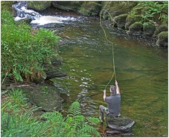 Cast (bob the bolder) Tags: uk devon eastlyn river fishing angling fly cast trout