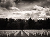 American WWII Cemetery, Luxembourg (1mpl) Tags: olympusomdem1 luxembourg travelphotography cemeteries wwii bw monochrome niksilverefexpro
