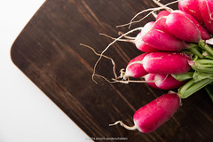 Radishes. (annick vanderschelden) Tags: radishes radish long whitepoint green raphanussativus edible rootvegetable brassicaceae saladvegetable flavor color length sharpflavor cooking food nutrients culinary