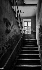 Viejas escaleras (Perurena) Tags: escaleras stairs peldaos ventana window ruina decay blancoynegro blackandwhite sombras shadows luces lights varsovia polonia