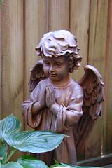 Garden Angel (redhorse5.0) Tags: angel garden redhorse50 sonya850 statue gardenornament