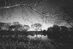 isla, invierno y sol (rodrigoramo) Tags: rodrigoramorodrigoramofotografiaprofesional2016fotografo fujistas fuji fujifilm fujinon 23mm f14 santa fe isla litoral landscape paisaje invierno winter