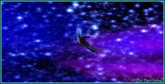 Perdu  tout jamais. (Tim Deschanel) Tags: tim deschanel sl second life cool rush exploration landscape paysage ovni alien ciel toiles seul alone sky stars