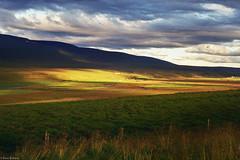 (Karo Krmer) Tags: island iceland canonae1 analog 35mm ektar100 landschaft landscape wolken clouds lichtundschatten wetter weather grass