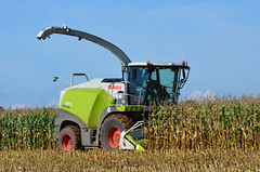 CLAAS Jaguar 870 (sgreen757) Tags: claas jaguar harvest harvester harvesting glos gloucestershire cutting maize 870 nikon d7000 hawkesbury upton agriculture rural countryside cotswolds uk england october 2016