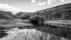 Bollihope . (wayman2011) Tags: canon50d lightroom wayman2011 bwlandscapes mono quarrys reflections water pennines dales weardale bollihope countydurham uk