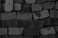 Differences (mlssrblkn) Tags: bw wall blackwhite bricks diversity nostalgic sw differences amateur