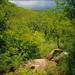 MW Lago Malawi 0201 009