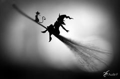 DSC_0527 (Aude Fruy) Tags: silhouette noir montage et blanc