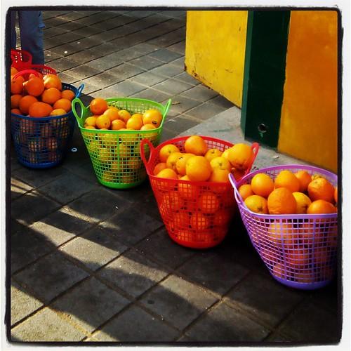 מוכנים לסחיטה #עכשיודורי #תפוזים
