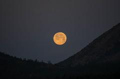 Strawberry Moon (ArneKaiser) Tags: arizona sky moon unitedstates fullmoon flagstaff nightsky nightscapes strawberrymoon nightandlowlightphotography