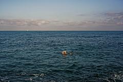 Tel Aviv (Hemo Kerem) Tags: street sea beach water 50mm israel telaviv minolta sony swimmer mf alpha manualfocus tlv rokkor minoltamd50mmf2 a7rii sonya7rm2 a7rm2 ilce7rm2