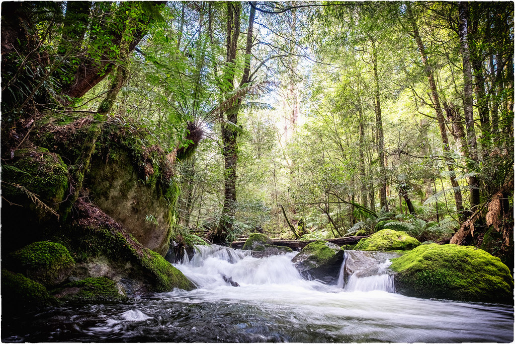Taggerty Cascades near Marysville #3 by r reeve, on Flickr