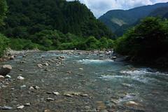 SKI-river DSC_2804 (touhenboku) Tags: iwana  yamame   minnow dace fly flyfishing fishing