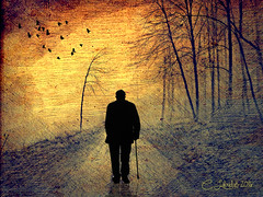 StrollOnThePath (clabudak) Tags: road man birds silhouette forest path modernart textures