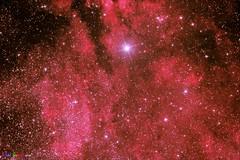 CYGNUS B SADR REGION (AstroSocSA) Tags: nebula supernovaremnant