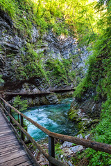 160517_075947_AB_3812 (aud.watson) Tags: europe slovenia vintgargorge radovariver radovnavalley gorge river rocks walkway